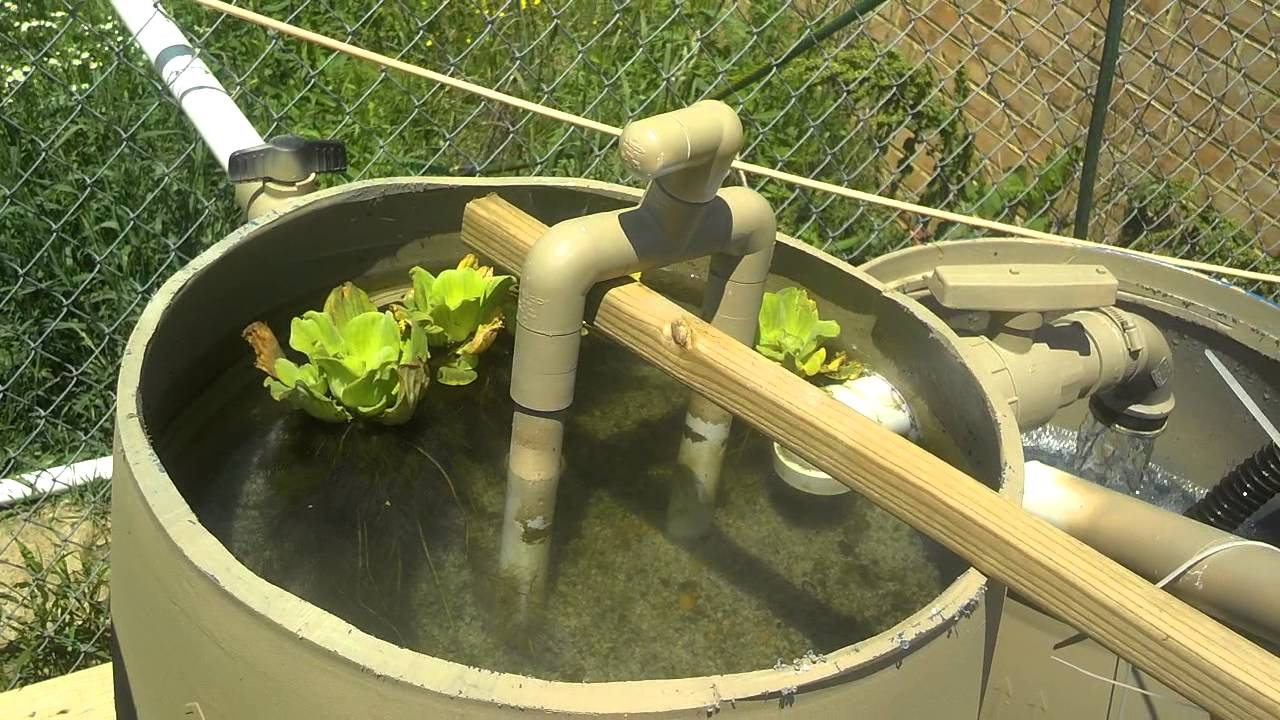 Diy Pond Diy Sand Gravel Pond Filters Youtube
