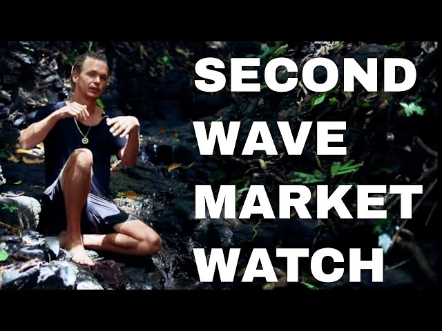 Second Wave Coronavirus Hits USA? Travel Bans? Bitcoin Stock Market Watch