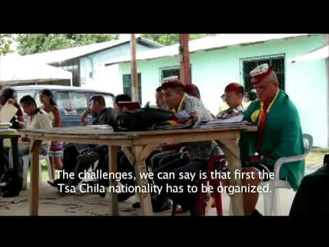 Ecuador Indigenous people and democratic process