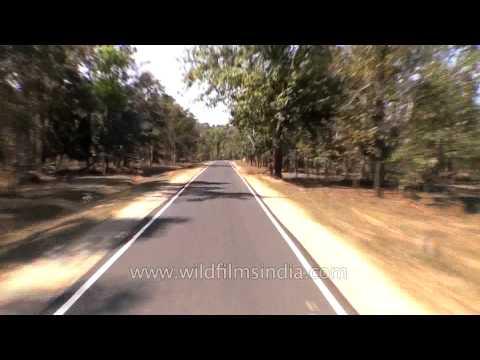 Travelling from Mandla to Jabalpur, Madhya Pradesh