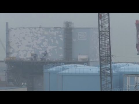 New camera to probe the state of Fukushima No. 2 reactor