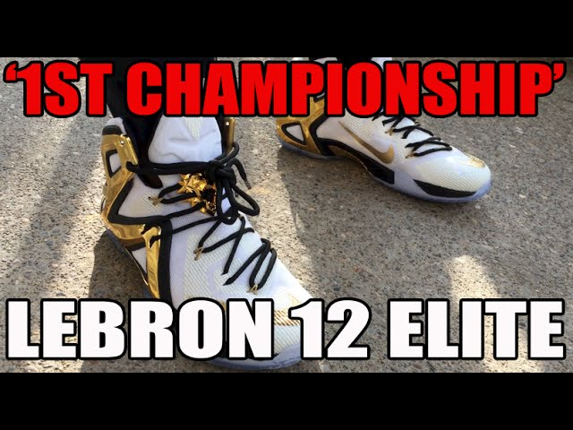 2015 New Arrive Nike Lebron 9 Black White 469764 060 Lebron Chea