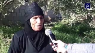 السبعينية أم أحمد من معان ماتزال تستخدم الرحى الحجرية رغم انقراضها