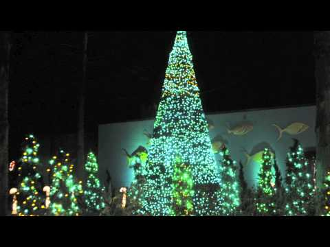 Columbia Riverbanks Zoo Christmas 2011.mov - YouTube