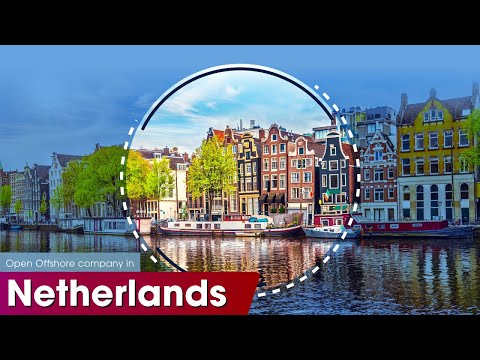 ONE IBC    SET UP OFFSHORE COMPANIES IN THE NETHERLANDS