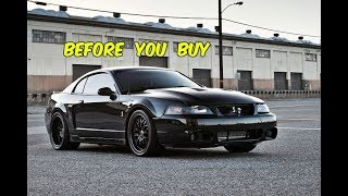Watch This BEFORE You Buy an SVT Terminator Cobra!