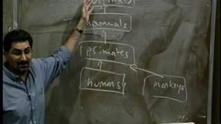 Lecture 4 | Programming Methodology (Stanford)