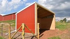 DIY Building Lean Barn Shelter for Horses or Cattle