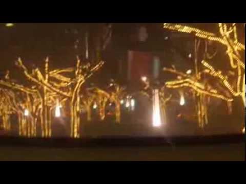 Unter Den Linden Weihnachtsbeleuchtung.Weihnachtsbeleuchtung Unter Den Linden In Berlin 2013