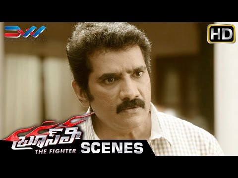 Bruce Lee The Fighter Telugu Full Movie | Ram Charan | Rakul Preet | DVV | Bruce Lee Movie Scenes