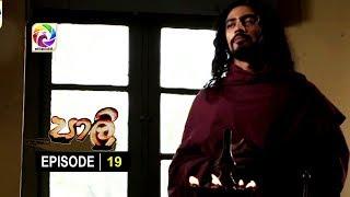 පාලි | Paali Episode 19 | සෙනසුරාදා සහ ඉරිදා රාත්රී 8.25 ට.. Thumbnail