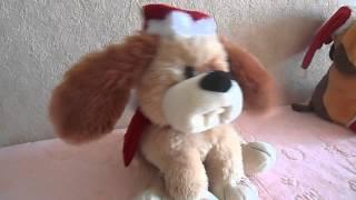 Интерактивная поющая собака(кокер)