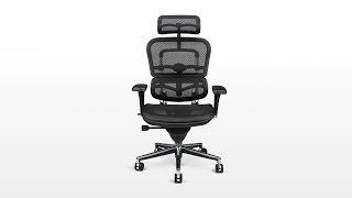 Raynor Ergohuman Me7erg Mesh Chair With Headrest Open