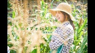 『リトル・フォレスト 春夏秋冬』特報