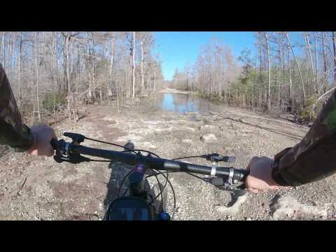 Hunting Big Cypress Part  1  Scouting For Turkeys