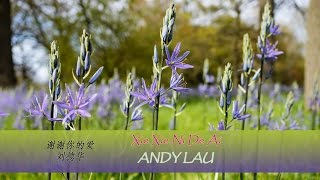 Xie Xie Ni De Ai lyrics - Andy Lau (Pinyin + English translation) Learn Chinese by songs