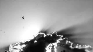 Manu Chao Volando Voy