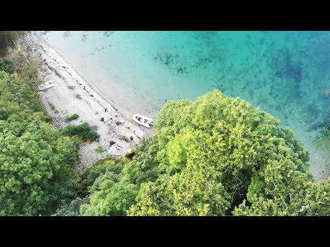 Spearfishing UK - Summer Adventures 2019 🌴
