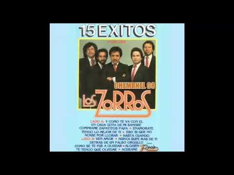 LOS ZORROS DE MEXICALI 15 �XITOS �LBUM COMPLETO (CHEMANEL)