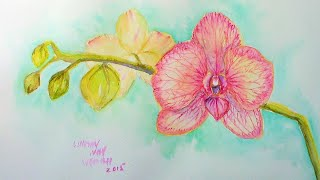 Orchid Watercolor Full Lesson