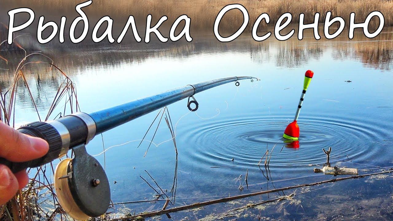 Рыбалка на поплавок Осенью в тихом заливе