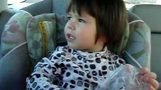 Amelka w samochodzie