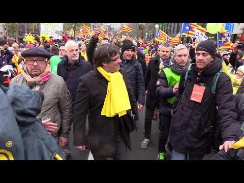Hem omplert Brusel·les