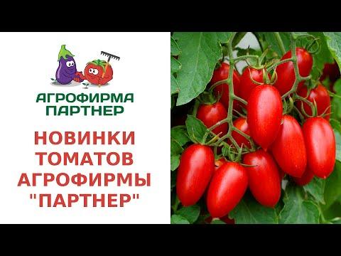 """НОВИНКИ ТОМАТОВ АГРОФИРМЫ """"ПАРТНЕР"""""""