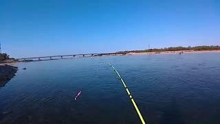 Рыбалка на Колыме. Быстрое вываживание кижуча. Река Армань.