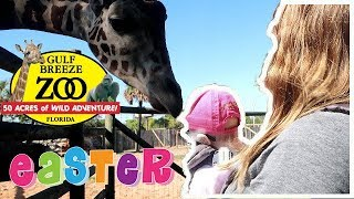 GULF BREEZE ZOO ON EASTER!!!! 2018