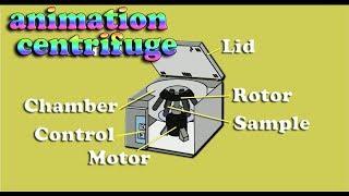 how to works centrifuge basic principle - centrifuge animation