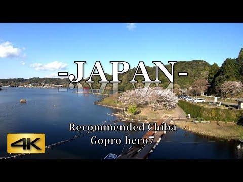4K 60fps Japan  Kameyama Dam in Chiba 亀山ダム Near Tokyo  Japan Tourist Spots! Cherry blossoms