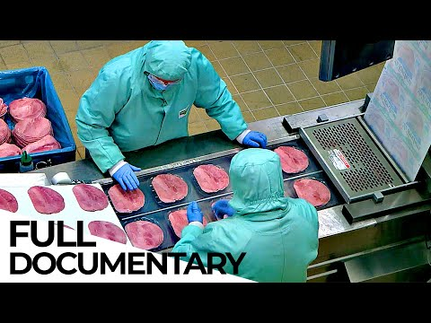 The Meat Lobby: How the Meat Industry Hides the Truth | ENDEVR Documentary