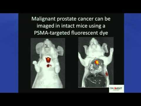 Pittcon 2014 - Cancer Nanotechnology Symposia: Presentation 4