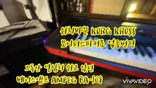 Ampeg BA-108 + Korg Kross (암펙 …