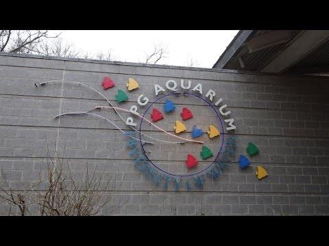 Pittsburgh Zoo & PPG Aquarium Pt 2 (4-11-16)