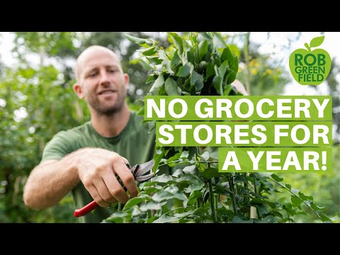 Growing And Foraging 100% Of My Food - No Grocery Stores For A Year!