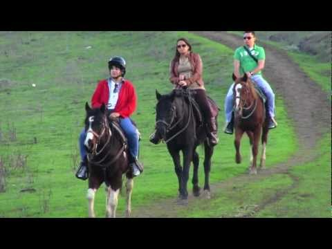 Talking Horse Trail Ride at Heaven's Ranch
