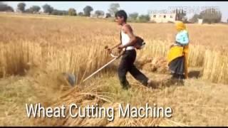 गेंहू काटने का देसी जुगाड़ ।। गेंहू कटाई मशीन ।। Wheat Cutting Machine,Desi Jugad,  Equipment