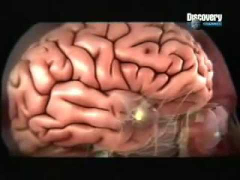 how our mind works part 1 in hindi