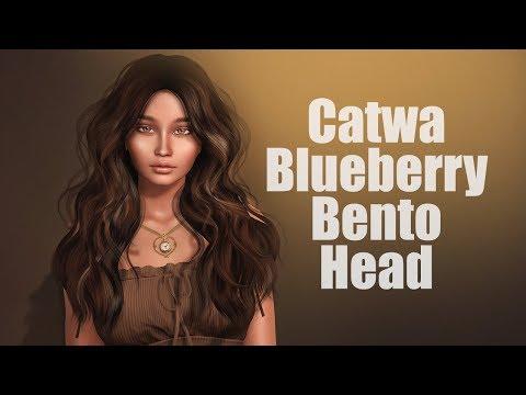 Catwa Blueberry Bento Mesh Head – StrawberrySingh com