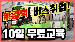 무경력 버스취업 비법.. 10일간 버스 무료교육까지??