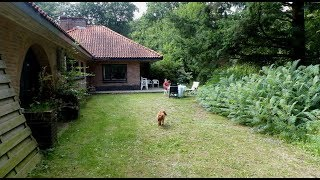 Natuurhuisje 32292 Bennekom - midweek / Harskamp - Beekbergen - Arnhem 2017