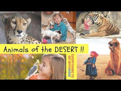 Animals at Sharjah Desert Park