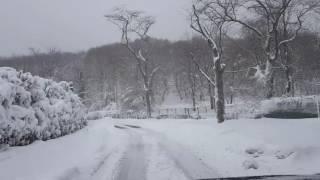 7 Ocak 2017 İstanbul da kar Kocataş Orman Yolu