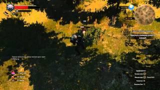 Ведьмак 3: Дикая Охота - 14 √ ВОПРОСЫ и КВЕСТЫ