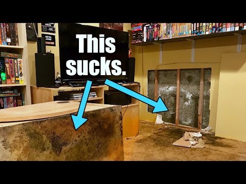 OH NO! Water & Mold in the GAME ROOM! $10,000 to fix!