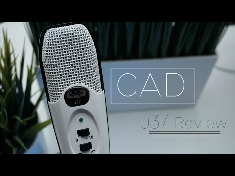 Best Budget Studio Mic | CAD u37 Professional USB Microphone Review!