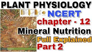 NCERT Ch-14 Ecosystem Notes class 12 Biology NCERT BOARDS