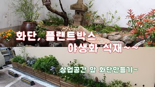 화단과 플랜트박스에 야생화 심기~ /정원/조경/